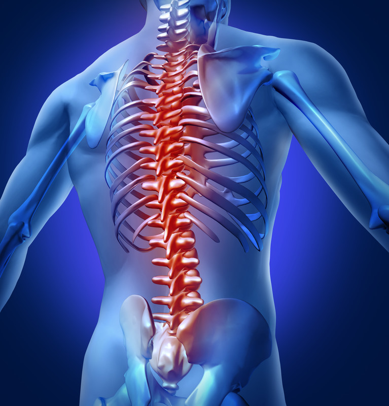 Contusive Spinal Cord Injury